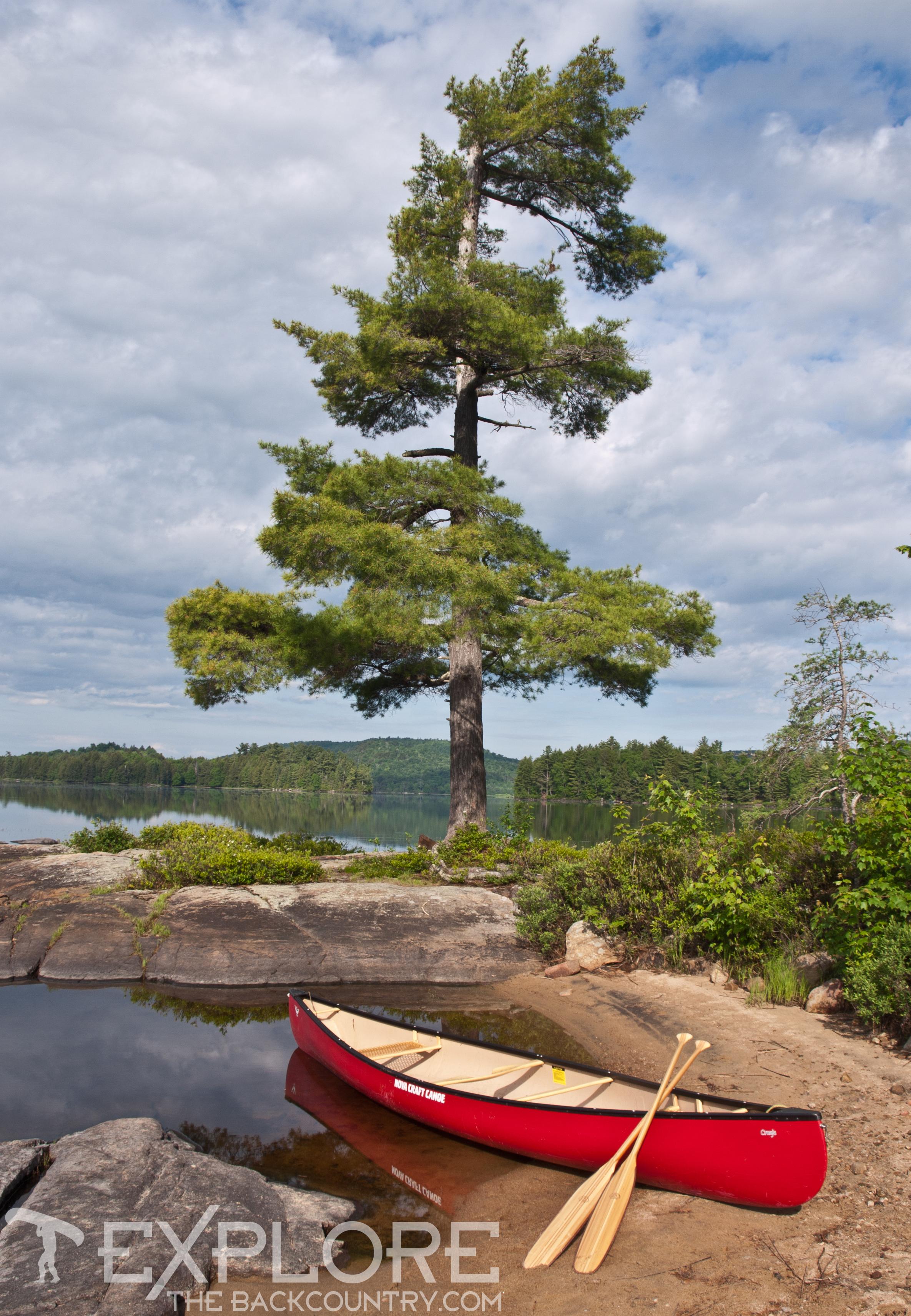 Adirondack Solitude