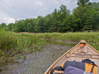 Wilderness in the Heart of Cottage Country: The Upper Gibson River
