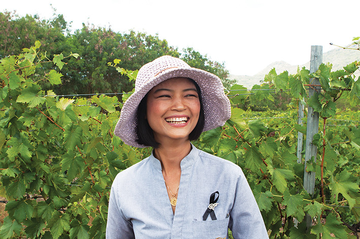 Passeio pelos vinhedos na vinícola Monsoon Valley (Hua Hin Hills)