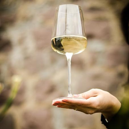 7 vinhos brancos para aproveitar as temperaturas altas