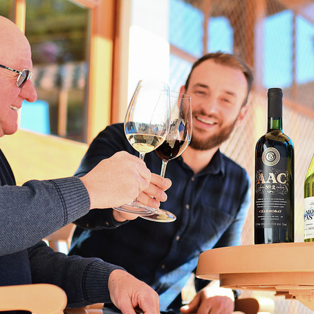 Bodega Czarnobay: vinícola gaúcha amplia linha de vinhos com um Sauvignon Blanc e um corte tinto