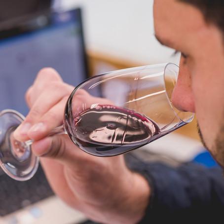 Avaliação Nacional de Vinhos 2021: enólogos iniciam degustação de seleção