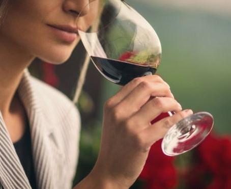 Wine South America destaca a atuação feminina no universo vitivinícola