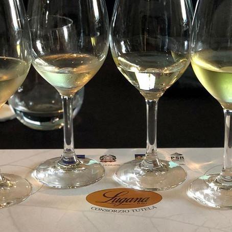 Com que uva é elaborado o vinho italiano Lugana?
