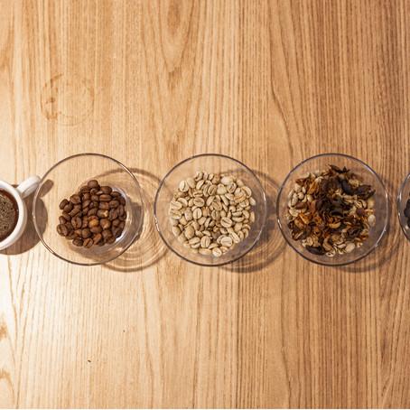 Qual é a diferença entre café tradicional e café especial?