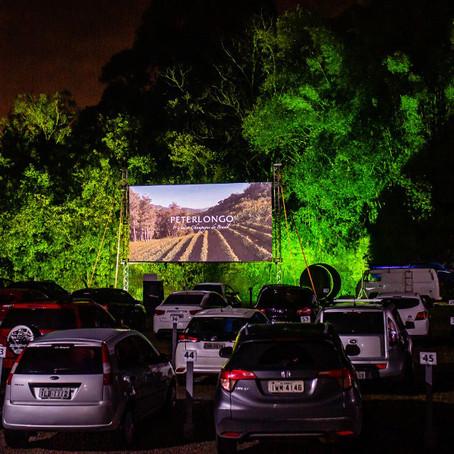 Dia das Crianças: que tal um piquenique ao ar livre e uma sessão de cinema  na Vinícola Peterlongo?