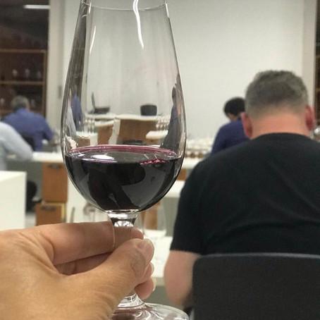 Primeira safra de vinhos com Selo IP Altos Montes recebe certificação