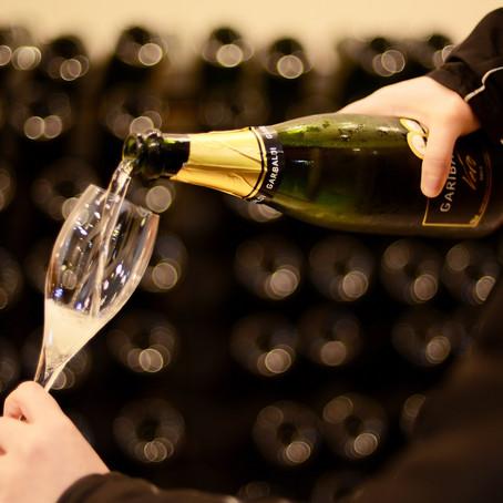 Garibaldi Experience: imersão no mundo do vinho