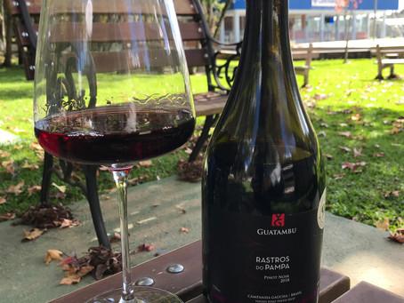 Pinot Noir da Campanha Gaúcha conquista 92 pontos na degustação da Bon Vivant