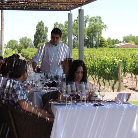 Mendoza: um paraíso para quem gosta de fazer enoturismo