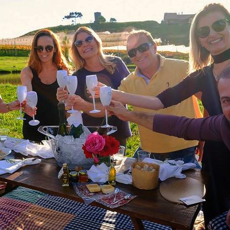 Vinícolas catarinenses se integram a programação do Dia do Vinho