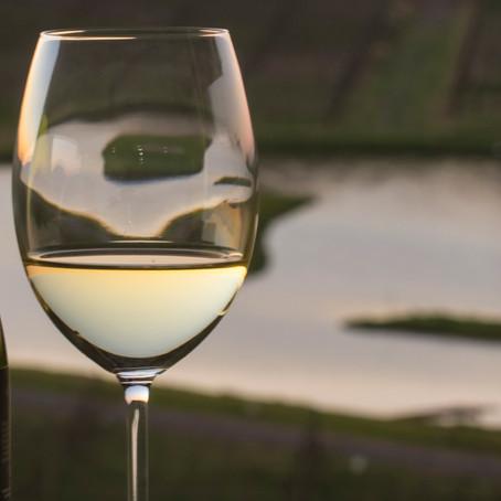 Chardonnay Day: uma seleção de 5 vinhos frescos e com excelente custo-benefício
