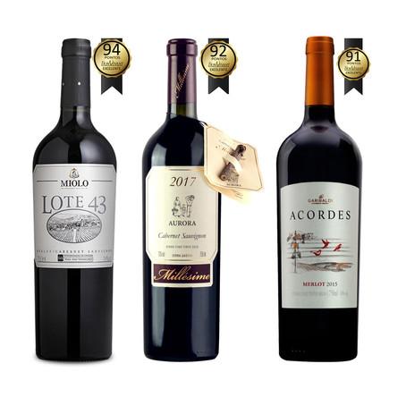 Três vinhos bem pontuados no guia 'Tintos Especiais' que vale a pena você conhecer