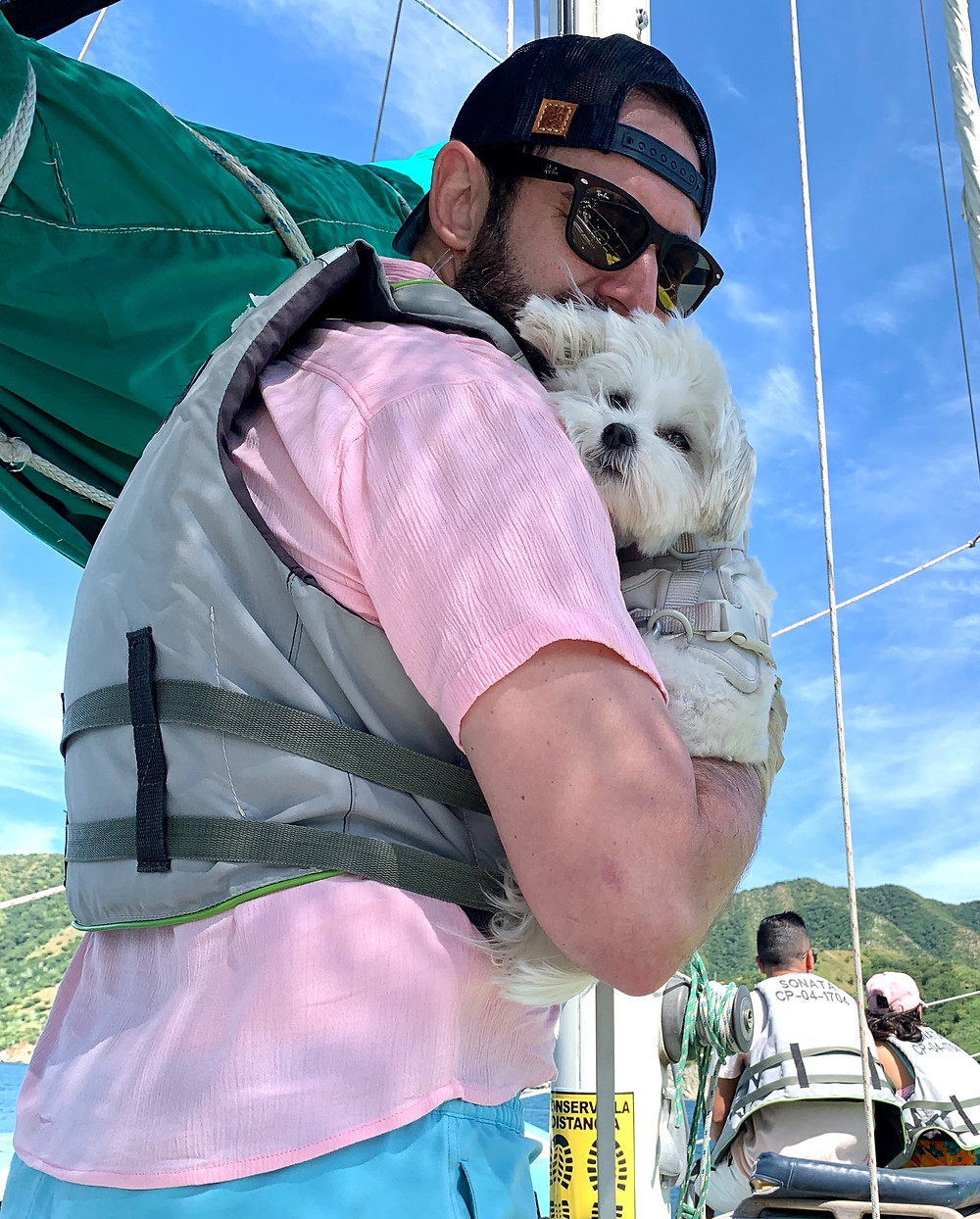 dog work life balance interoperate