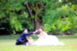 栃木結婚相談所
