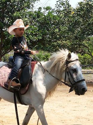 สอนขี่ม้าใกล้กรุงเทพ