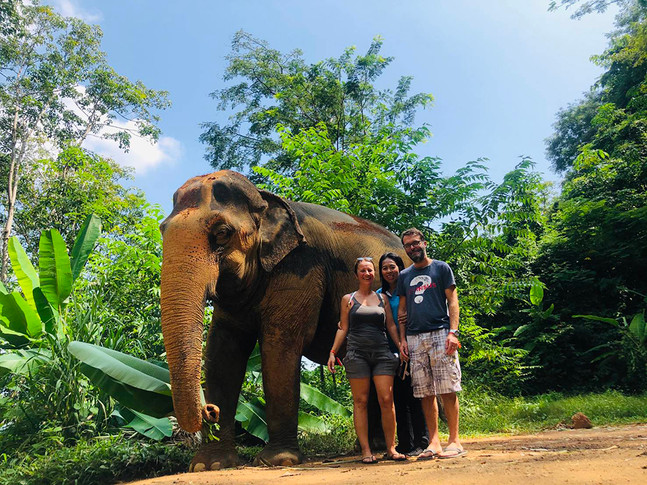 Chalong Elephant Retirement and activities.