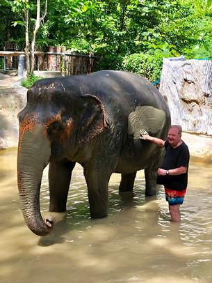 Chalong Elephant Retirement
