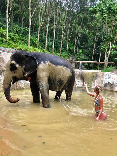 Bathing wand mud spa with elephant.