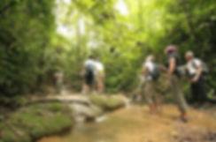 Trip Khao Sok Discovery