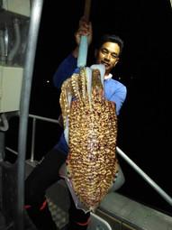 real info phuket fishing