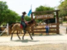 ขี่ม้าใกล้กรุง สอนขี่ม้า ฟาร์มเสตย์