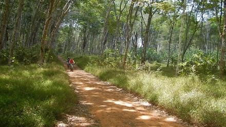 South Thailand Bike Tour