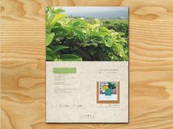 小島茶人,台灣茶,海報設計