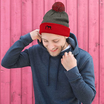 pom-pom-knit-cap-dark-heather-grey-red-f