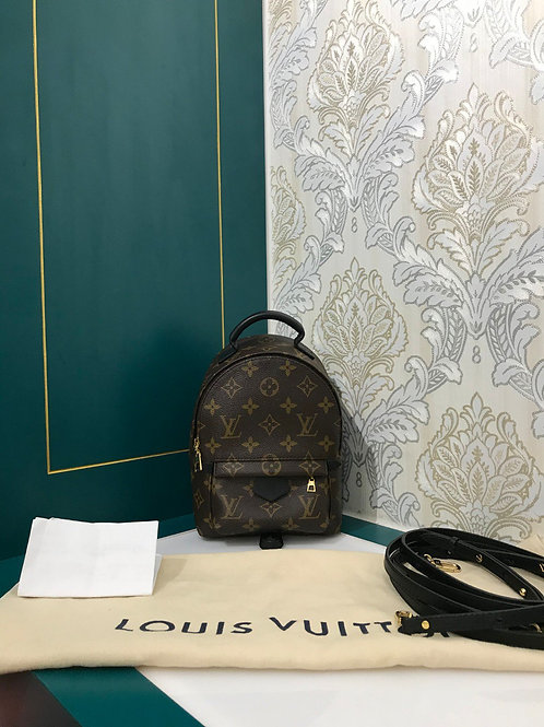 Brand New LV Louis Vuitton  Palm Springs Mini backpack canvas monogram