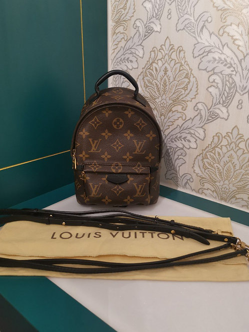 Louis Vuitton LV Palm Springs Mini backpack canvas monogram