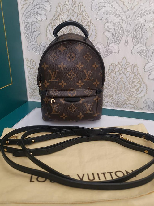 LV Louis Vuitton Palm Spring Mini Backpack Monogram Canvas