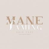 Mane Taming