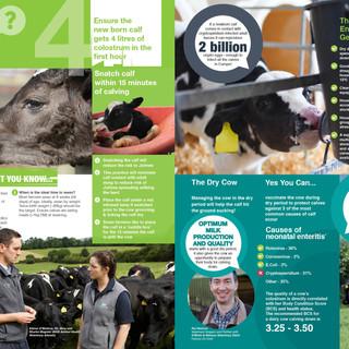 010442-MSD-Calf-Healthspread.jpg