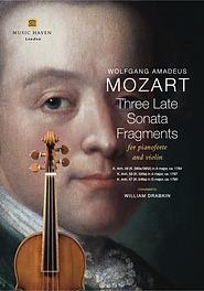 Three Late Sonata Fragments
