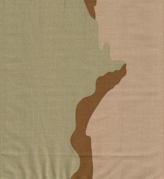 3-Color Desert Camo