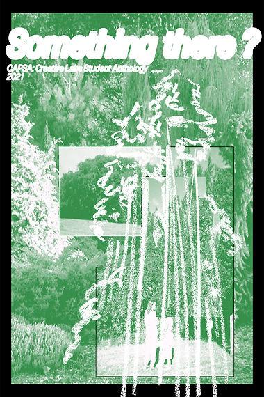 CAPSA Journal Cover.jpg