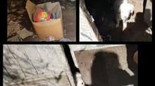 Rescapés de TRUN abandonnés dans une cave