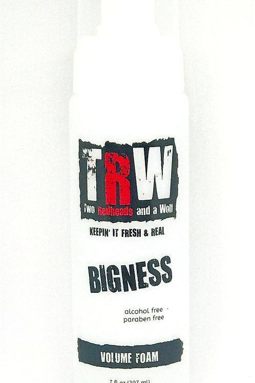 Bigness Volume Foam