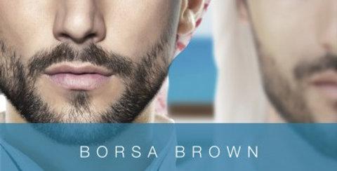 Borsa Brown:Az Arab fia (Arab 5.)