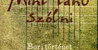 Andai Ferenc: Mint tanu szólni - Bori történet - Bori történet