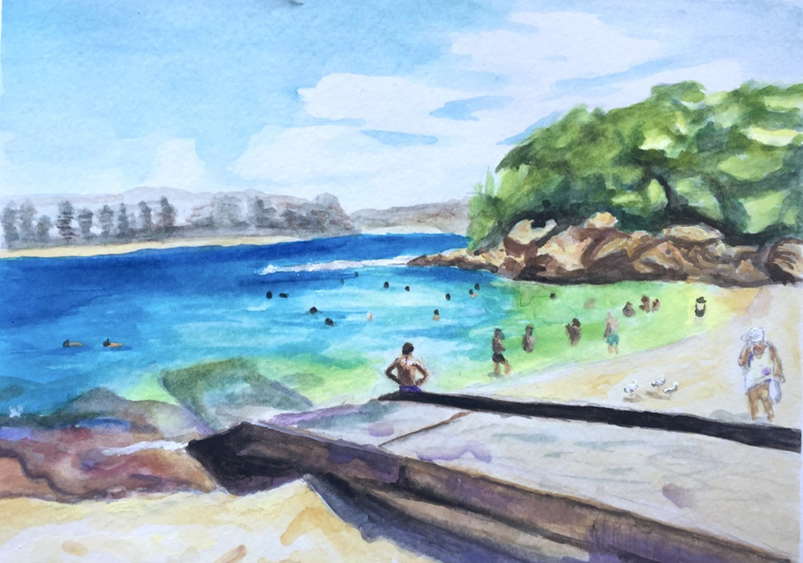 Shelly Beach Study (2018)