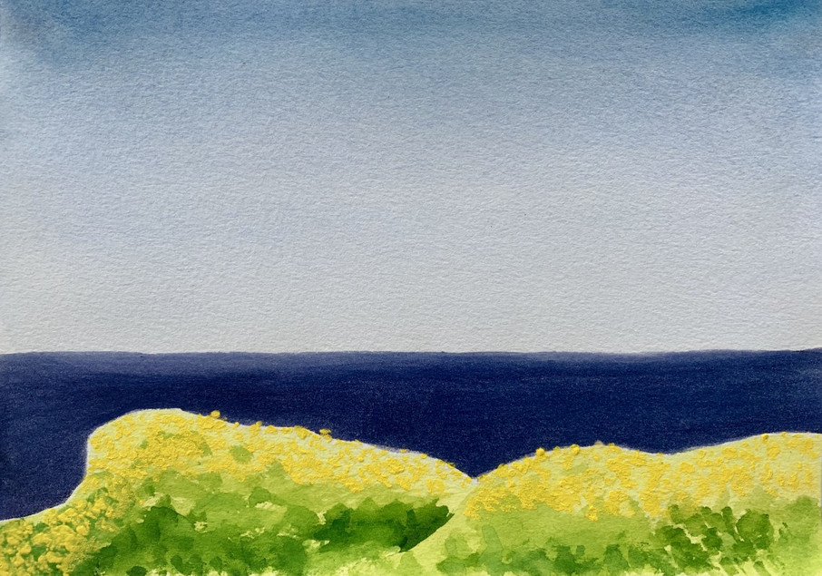 Kiama Landscape (2017)