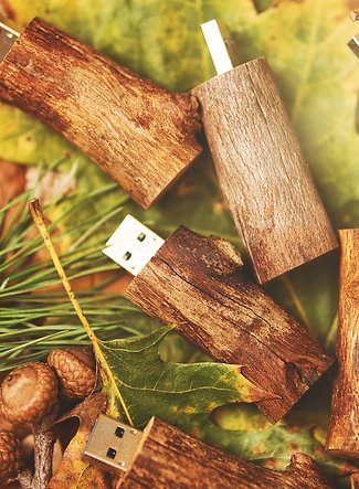 Flash Drive USB 3.0 32gb - TWIG