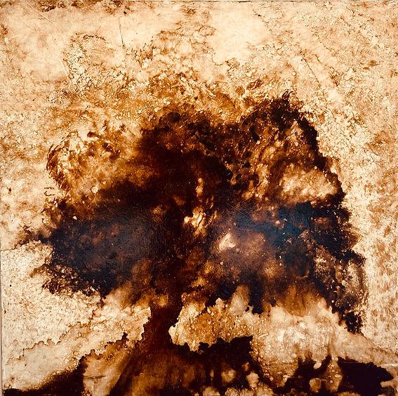 Tree 102 x 102cm OIl on Canvas.jpg
