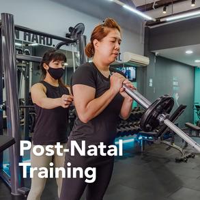 Post-Natal Training