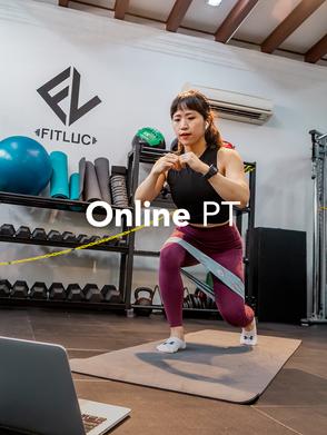 Online PT