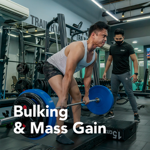 Bulking & Mass Gain