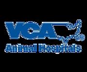 VCA - Logo.png