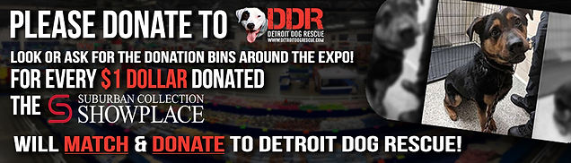 Detroit Dog Rescue - Web Ad.jpg